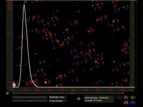 100nm Polystyrene Standards Analysis Video