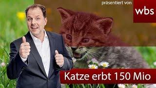 Erbt Lagerfelds Katze wirklich 150 Millionen Euro? | Rechtsanwalt Christian Solmecke