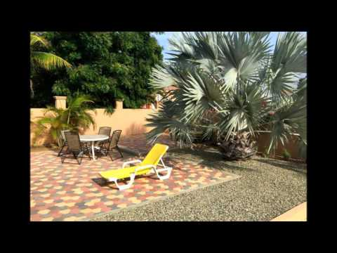 Aruba's Dream Vacation Homes - Luxury Vacation Home Rentals
