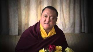 Shamar Rinpoche's response to the Private office of HH the Dalai Lama Part 2/3