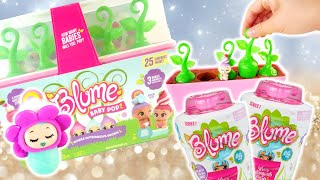New Blume Baby Pops and Blume Dolls Review
