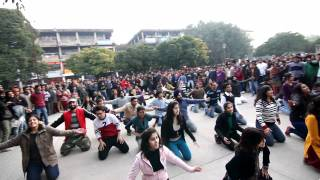 Flash Mob - Sector 17, Chandigarh *OFFICIAL*.