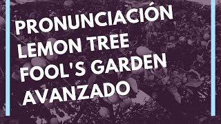 Pronunciación Fonética Letra Lemon Tree Fool S Garden Pronunciaciones Com