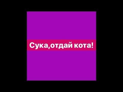 МУККА - ОТДАЙ КОТА