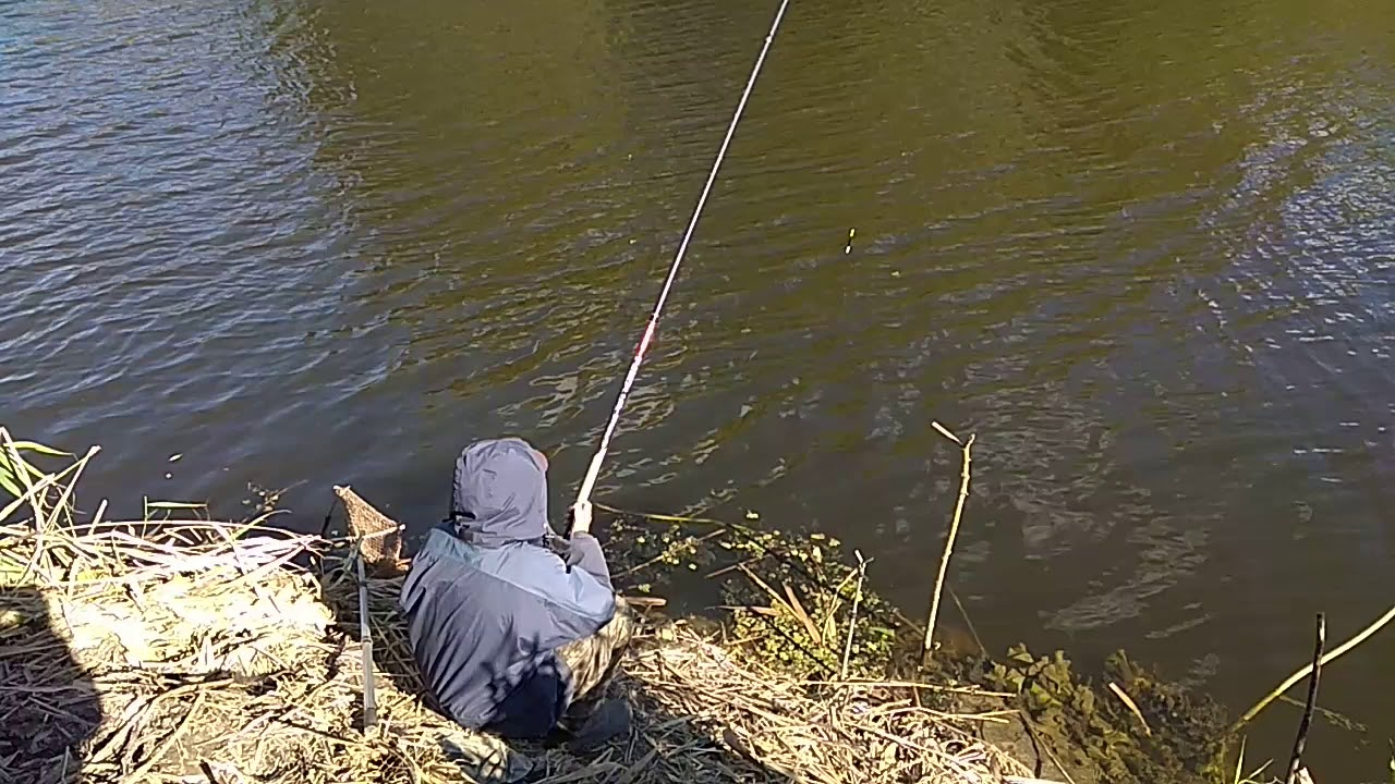 Рыбалка на реке сула