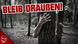 Gehe niemals Nachts in den Wald! – Ist alles in Ordnung?