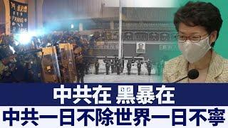 港澳辦批「黑暴」 胡志偉:真正黑暴是港警|新唐人亞太電視|20200510