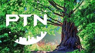 Psytrance Nation LIVE (Chillout) #Psytrance