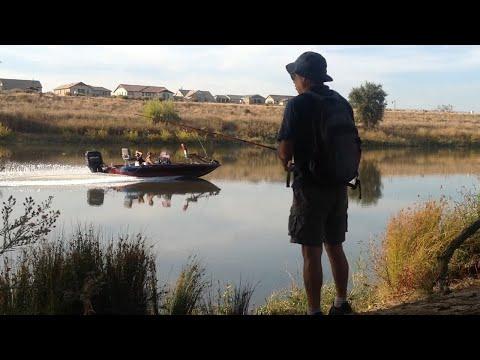 Delta Striper Bank Fishing - Too Many Boats!
