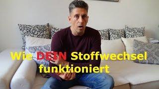 Wie DEIN Stoffwechsel funktioniert! | ABNEHMEN-BERLIN.COM