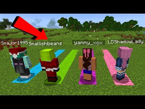 Minecraft BUT We Only Walk In A Straight Line with @LDShadowLady @SmallishBeans @Dangthatsalongname