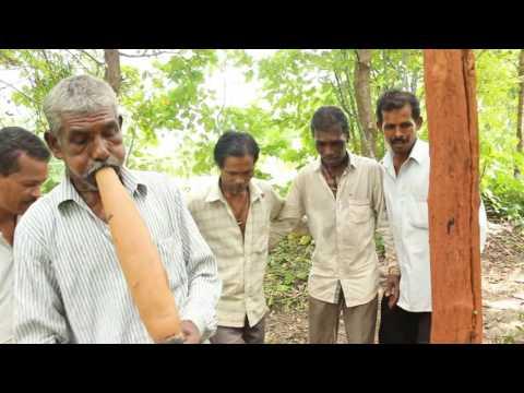 Varli Samaj, Dasera Utsav  Dev pooja