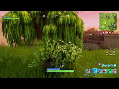 Fortnite win full lenght... Patience is the key