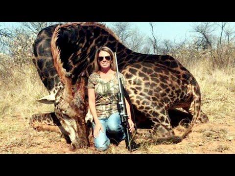 Celebrities Blast Woman Who Shot Elderly Giraffe During African Safari