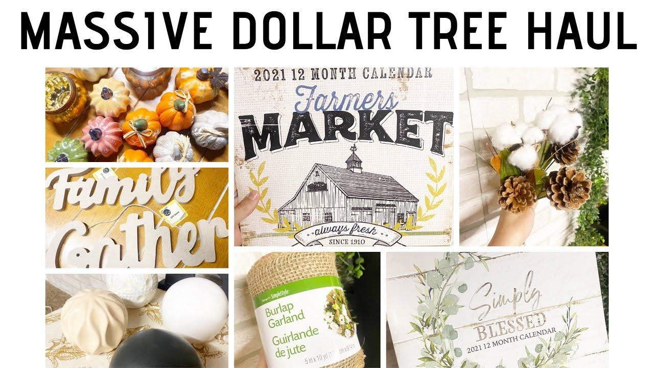 MASSIVE DOLLAR TREE HAUL  HUMONGOUS DOLLAR TREE HAUL FROM TWO STATES  NEW  DOLLAR TREE ITEMS