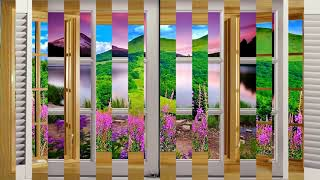 Beautiful flowers view out the window (HD1080p) thumbnail