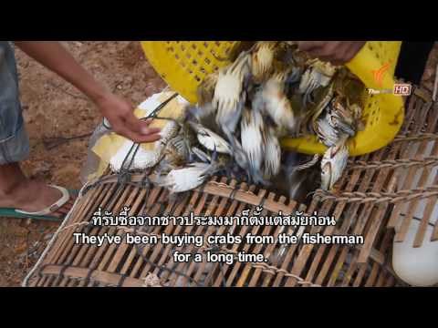 Spirit of Asia : The Fish Hunters of Mekong River