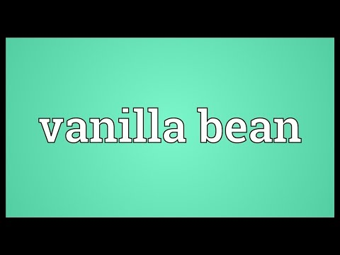 Vanilla bean Meaning