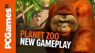Planet Zoo | 40 mins new gameplay featuring rampaging rhino and realistic weather
