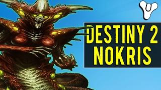 Nokris the Unknown Hive God in Destiny 2?