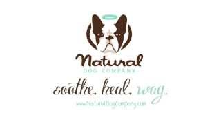 Snout Soother By Natural Dog Company For A Dry Chapped Dog Nose