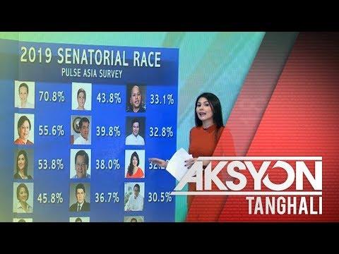 Sen  Poe, nangunguna sa senatorial survey ng Pulse Asia