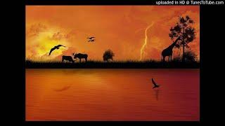 Dj Maphorisa Ft. KLY N Zingah - WILD THOUGHTS (Dj K AfroBeat Remix)