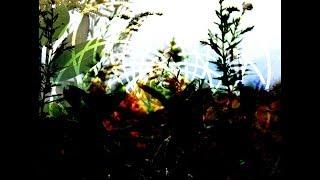 Njiijn - Somnus IV (full EP)
