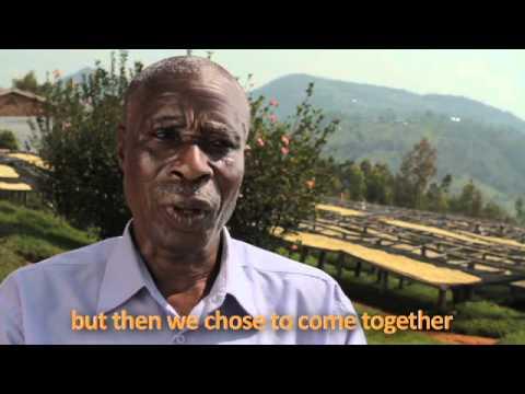 Root Capital: Access to Credit in Rwanda