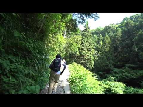 17/05/23 高尾山6号路〜琵琶滝〜上級コース 滑落現場の危険性を検証する。声での解説入り