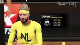 No Limit vs The World NBA 2k19 Comp Games Possible Pro Am Meta Reveal