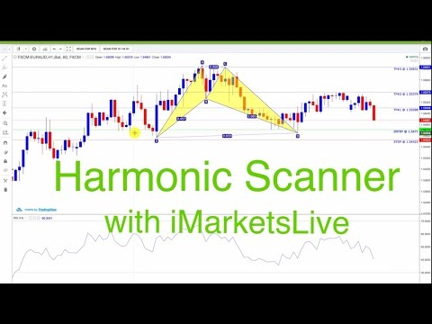Forex Harmonic Pattern Scanner with iMarketsLive - How to Trade Forex Successfully