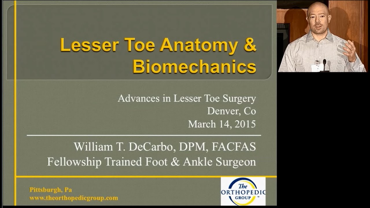 Lesser Toe Anatomy and Biomechanics - YouTube