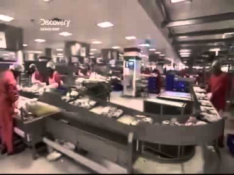 Emirates Airlines   Flight Catering Documentary