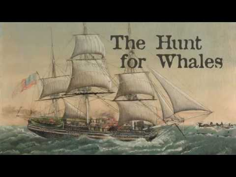 The Hunt for Whales, presented at the Nantucket Whaling Museum