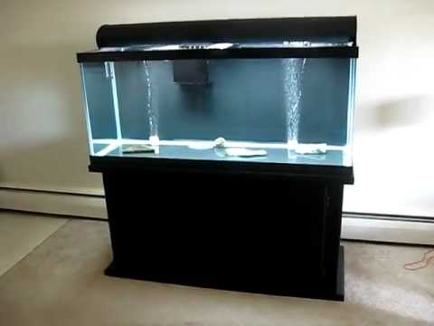 75 Gallon Tank Setup With Overflow And Sump Youtube