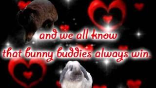 Schnuffel - Bunny buddy