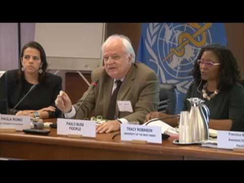 Comisión sobre Equidad y Desigualdades en Salud en la Región de las Américas Sesión 02