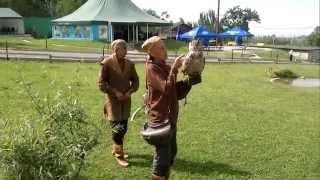 видео Шоу хищных птиц |