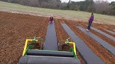 Transplanter with water wheel on mulch film with Rain-Flo