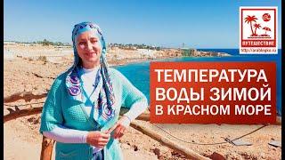 Температура воды в красном море зимой в феврале Шарм Эль Шейх 2020