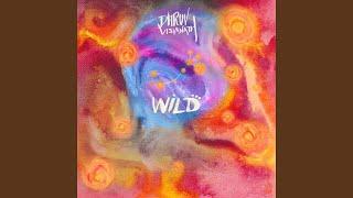 Gambar cover Wild (NDS Remix)