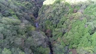 【空撮】紅葉前の山 紅葉が始まったらまた撮影フライトするよ。【4K】