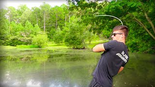 Catch MORE GIANT Bass in Ponds - TRY THIS (Bass Fishing Tips)