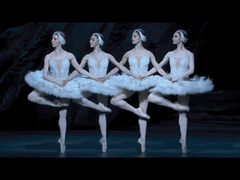 Swan Lake – Dance of the cygnets (The Royal Ballet)