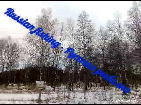 Рыбалка на паук зимой с берега НЕУДАЧА( - YouTube