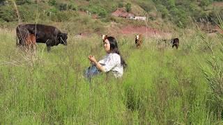 【南方小蓉】同村人都进城买高价房,她去闲居农村,草原放牛生活自由自在