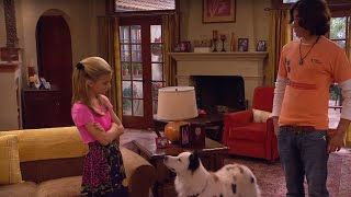 Dog With a Blog   verliefd   Disney Channel NL