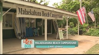 Experience Malaekahana Beach Campground!
