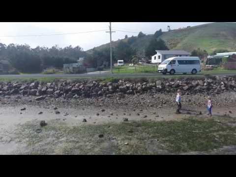 Otago peninsula drone footage